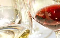 Tutti i vini VinoVip Cortina
