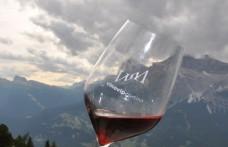 Wine-tasting delle Aquile